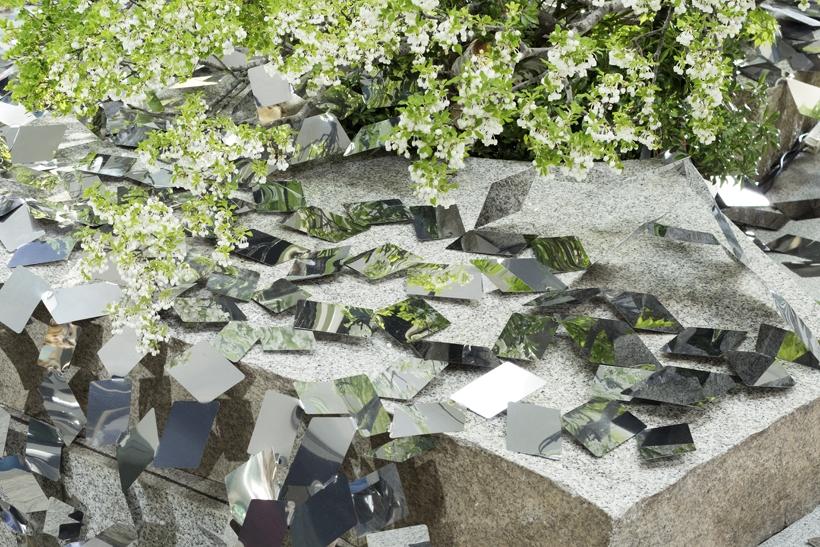 сделанный ним каменный сад и живые растения