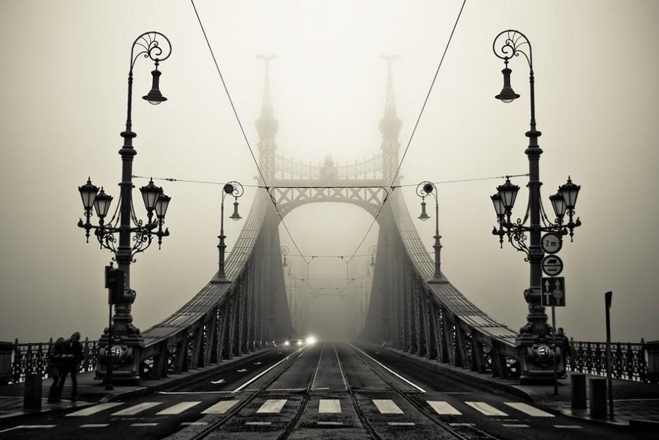 10. Мост Свободы, Будапешт, Венгрия