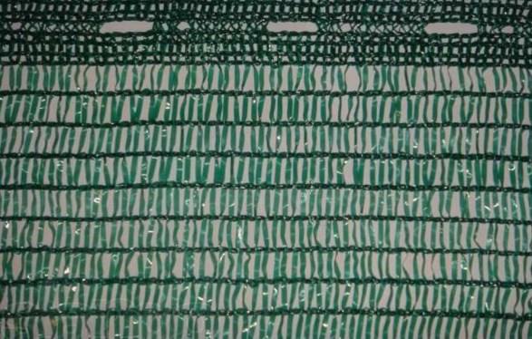 Рис 2 Сетка с отверстиями для подвязки